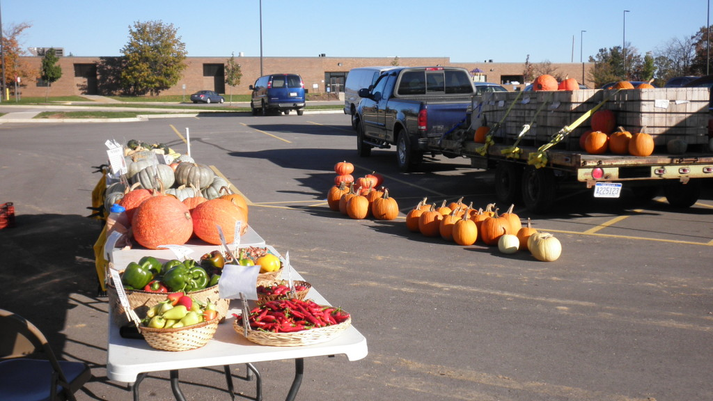 Fresh produce and pumpkins at a farmer's market.