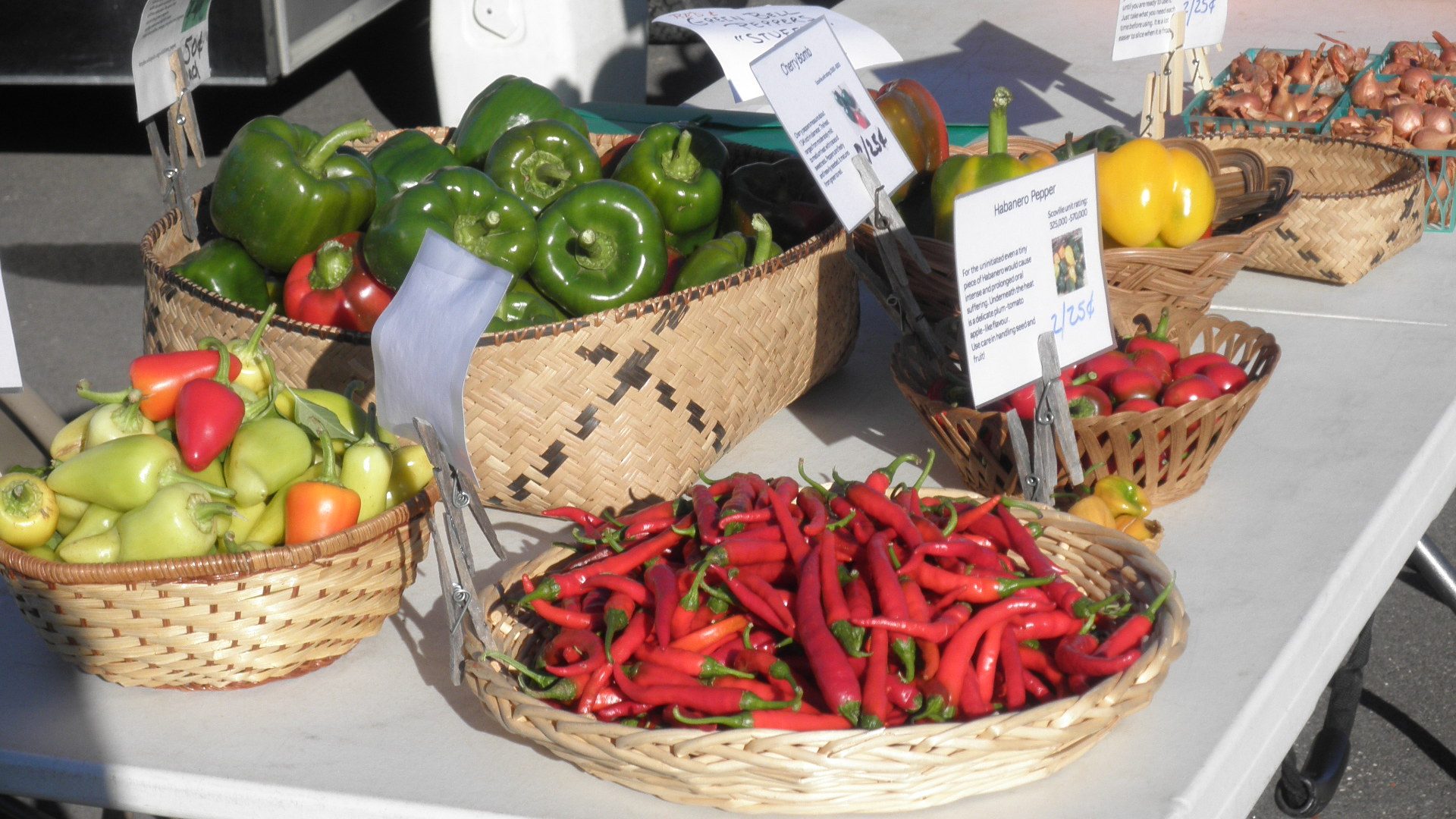 Fresh selection of peppers.
