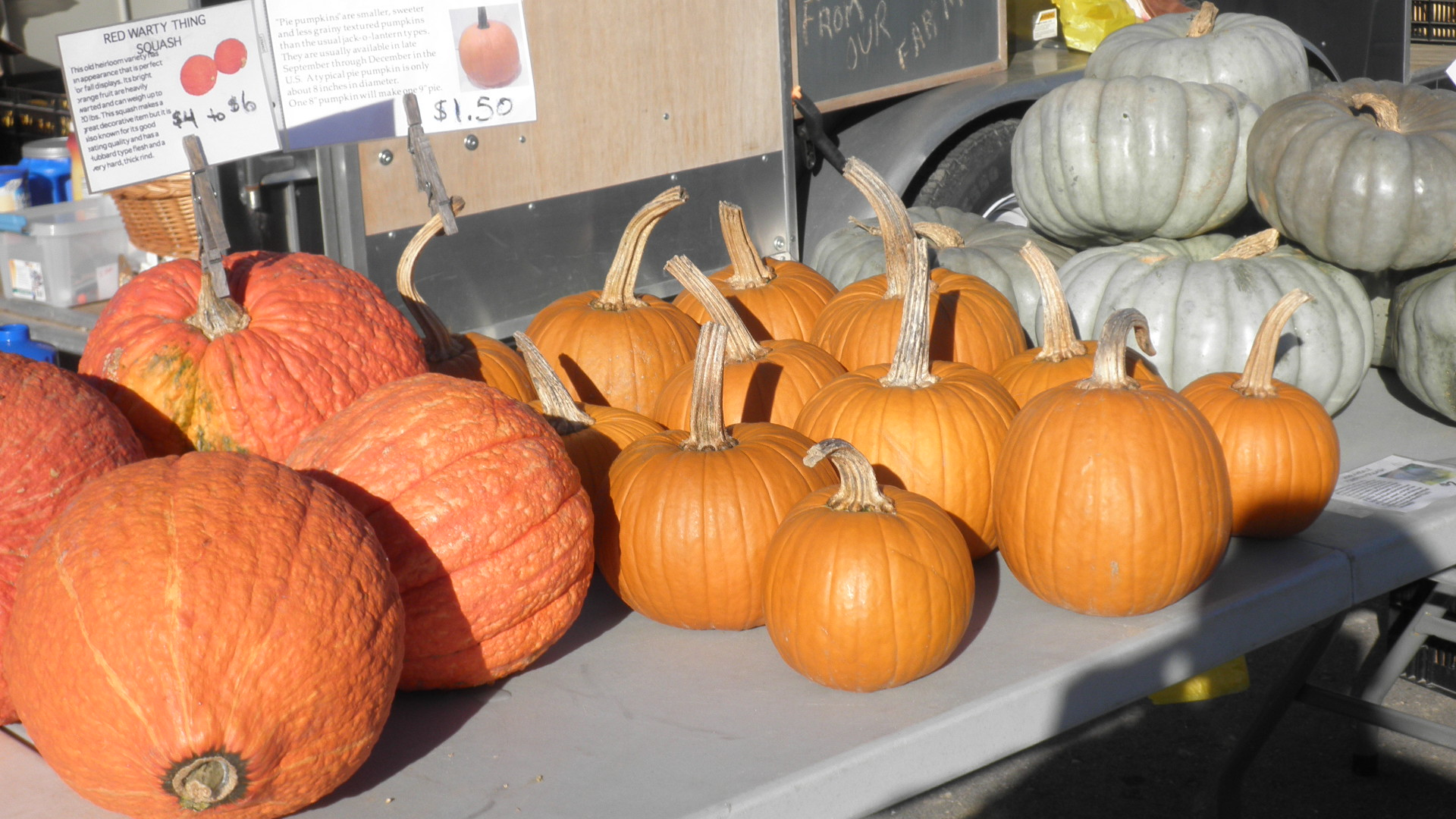 Pumpkins and squash on a table at the farmer's market.